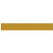 AJ Siddiqui logo